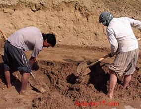 صدور کارت موقت ویژه اتباع افغانی