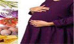 خواص آب نارگیل برای زنان باردار