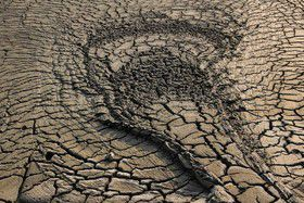 گزاری تصویری/ تالاب گلفشان «قارنیارق» در استان گلستان