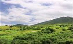 5 هزار و 600 هکتار از اراضی ملی شازند سند مالکیت تک برگی دریافت کردند