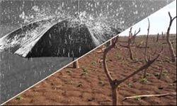 مرور خاطره باران در گلستان با طعم گس خشکسالی