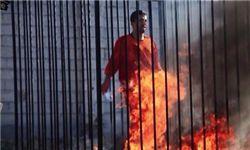 دانلود فیلم/ زنده سوزاندن خلبان اردنی +عکس